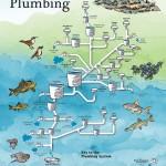 Col River Plumbing poster
